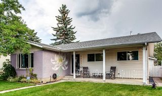 Main Photo: 5822 RUNDLEHORN Drive NE in Calgary: Pineridge Detached for sale : MLS®# A1019620