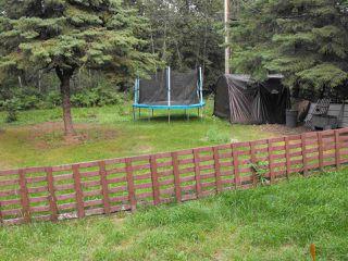 Photo 17: 5234 Ravine Drive: Elk Point House for sale : MLS®# E4211315
