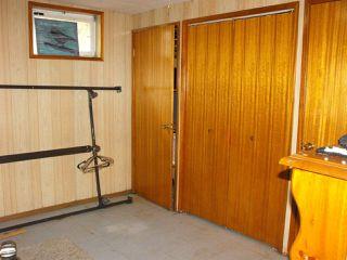Photo 15: 5234 Ravine Drive: Elk Point House for sale : MLS®# E4211315