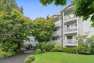 Main Photo: 308 1060 Linden Ave in : Vi Rockland Condo for sale (Victoria)  : MLS®# 855396