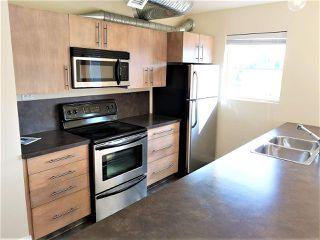Photo 11: 304 11633 105 Avenue in Edmonton: Zone 08 Condo for sale : MLS®# E4166997