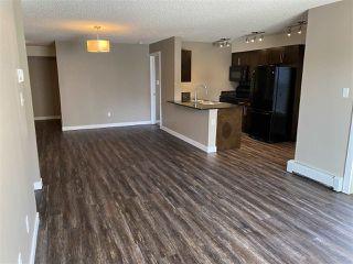 Photo 32: 215 11816 22 Avenue in Edmonton: Zone 55 Condo for sale : MLS®# E4193350