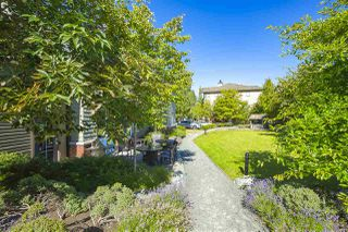 """Photo 23: 74 14838 61 Avenue in Surrey: Sullivan Station Townhouse for sale in """"SEQUOIA"""" : MLS®# R2474675"""