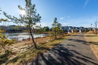 Photo 41: 385 GRIESBACH_SCHOOL Road in Edmonton: Zone 27 House for sale : MLS®# E4220230