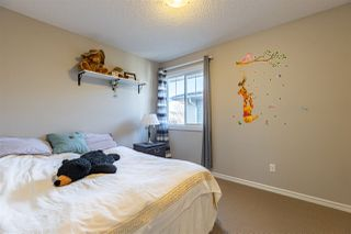 Photo 23: 385 GRIESBACH_SCHOOL Road in Edmonton: Zone 27 House for sale : MLS®# E4220230