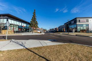 Photo 49: 385 GRIESBACH_SCHOOL Road in Edmonton: Zone 27 House for sale : MLS®# E4220230