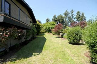 Photo 16: 4590 Seawood Terr in Victoria: Residential for sale : MLS®# 266855