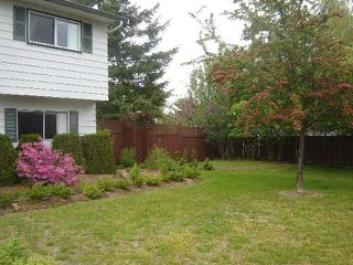 Photo 14: 403 DENMAN STREET in COMOX: Other for sale : MLS®# 297703