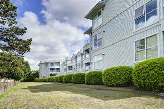 """Photo 30: 104 8611 GENERAL CURRIE Road in Richmond: Brighouse South Condo for sale in """"SPRINGATE"""" : MLS®# R2460917"""
