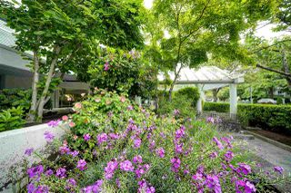 """Photo 29: 104 8611 GENERAL CURRIE Road in Richmond: Brighouse South Condo for sale in """"SPRINGATE"""" : MLS®# R2460917"""