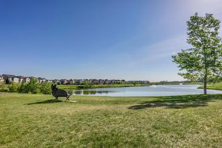Photo 48: 41 BRIGHTONDALE Parade SE in Calgary: New Brighton Detached for sale : MLS®# A1014141