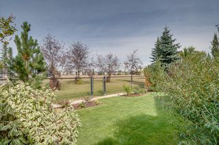 Photo 42: 41 BRIGHTONDALE Parade SE in Calgary: New Brighton Detached for sale : MLS®# A1014141