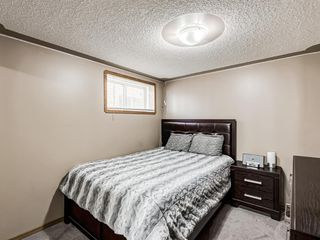 Photo 33: 105 Cambrille Crescent: Strathmore Detached for sale : MLS®# A1038151