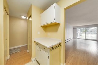 "Photo 9: 117 6420 BUSWELL Street in Richmond: Brighouse Condo for sale in ""Bluehaven"" : MLS®# R2513192"