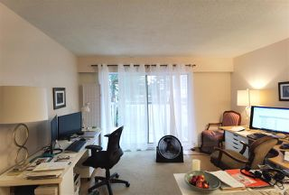 "Photo 17: 117 6420 BUSWELL Street in Richmond: Brighouse Condo for sale in ""Bluehaven"" : MLS®# R2513192"