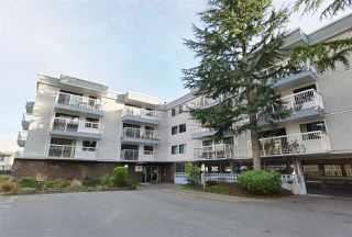 "Photo 1: 117 6420 BUSWELL Street in Richmond: Brighouse Condo for sale in ""Bluehaven"" : MLS®# R2513192"
