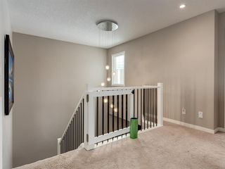 Photo 22: 61 Auburn Springs Place SE in Calgary: Auburn Bay Detached for sale : MLS®# A1050585