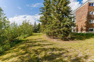 Main Photo: 408 4404 122 Street in Edmonton: Zone 16 Condo for sale : MLS®# E4169783