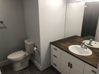 Photo 25: 4748 154 Avenue in Edmonton: Zone 03 House for sale : MLS®# E4182023