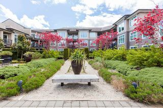 "Photo 14: 453 6758 188 Street in Surrey: Clayton Condo for sale in ""CALERA"" (Cloverdale)  : MLS®# R2452618"