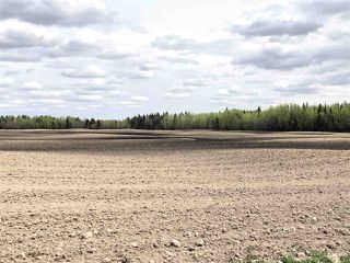 Photo 28: 621041 RR 225: Rural Athabasca County House for sale : MLS®# E4200641