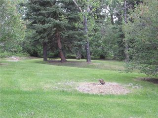 Photo 45: 32312 RR 44 Mountain View County: Rural Mountain View County Detached for sale : MLS®# C4301277