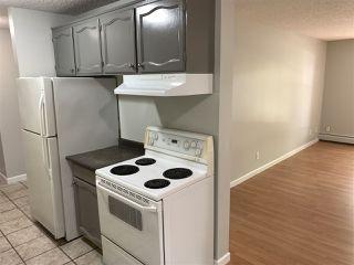 Photo 4: 210 10945 83 Street in Edmonton: Zone 09 Condo for sale : MLS®# E4202594
