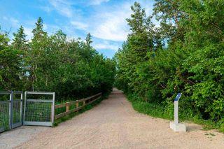 Photo 12: 7423 Saskatchewan Drive in Edmonton: Zone 15 Vacant Lot for sale : MLS®# E4202860