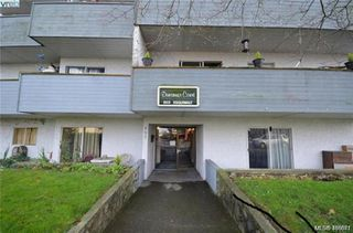 Photo 2: 803 Esquimalt Road in VICTORIA: Es Old Esquimalt Apartment Block for sale (Esquimalt)  : MLS®# 416671