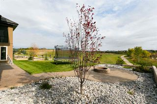 Photo 46: 52 PINNACLE Way: Rural Sturgeon County House for sale : MLS®# E4191436