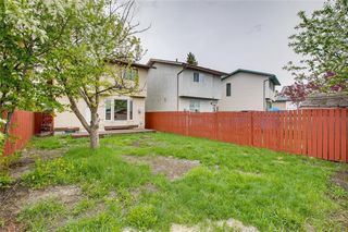 Photo 49: 23 SUNVALE Court SE in Calgary: Sundance Detached for sale : MLS®# C4297368