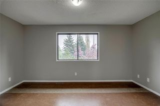 Photo 30: 23 SUNVALE Court SE in Calgary: Sundance Detached for sale : MLS®# C4297368