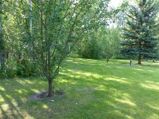 Photo 7: Hwy 771 94 453041 Highway: Rural Wetaskiwin County House for sale : MLS®# E4167447