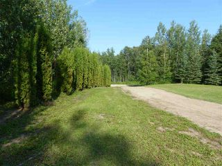 Photo 4: Hwy 771 94 453041 Highway: Rural Wetaskiwin County House for sale : MLS®# E4167447