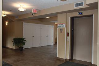 Photo 22: 411 8730 82 Avenue in Edmonton: Zone 18 Condo for sale : MLS®# E4191199
