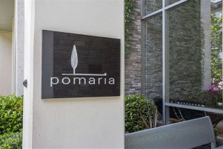 "Photo 21: 301 1455 HOWE Street in Vancouver: Yaletown Condo for sale in ""Pomaria"" (Vancouver West)  : MLS®# R2482632"