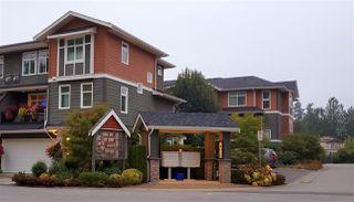 "Photo 3: 44 11461 236 Street in Maple Ridge: Cottonwood MR Townhouse for sale in ""TWO BIRDS"" : MLS®# R2499745"