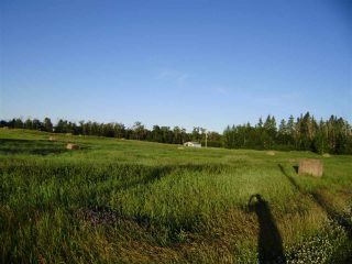Photo 7: 53109 RANGE ROAD 222: Ardrossan Vacant Lot for sale : MLS®# E4179405