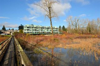 Photo 17: 4 1850 ARGUE STREET in Port Coquitlam: Citadel PQ Condo for sale : MLS®# R2421087