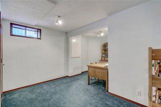 Photo 28: 84 DOUGLAS PARK Manor SE in Calgary: Douglasdale/Glen Detached for sale : MLS®# A1028601