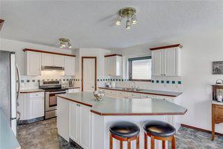 Photo 13: 84 DOUGLAS PARK Manor SE in Calgary: Douglasdale/Glen Detached for sale : MLS®# A1028601