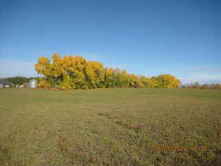 Main Photo: On Range Road 21 in Rural Red Deer County: NONE Land for sale : MLS®# A1045569