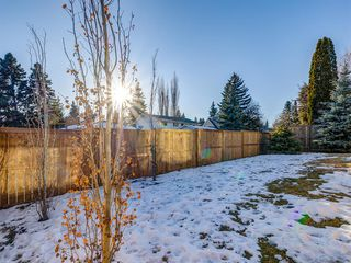 Photo 41: 3403 Underhill Drive NW in Calgary: University Heights Detached for sale : MLS®# A1053359
