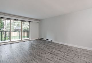 "Photo 4: 419 9867 MANCHESTER Drive in Burnaby: Cariboo Condo for sale in ""BARCLAY WOODS"" (Burnaby North)  : MLS®# R2525793"