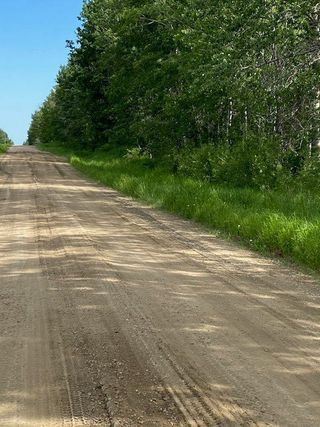 Photo 6: 55503 RGE RD 62: Rural Lac Ste. Anne County Rural Land/Vacant Lot for sale : MLS®# E4202378