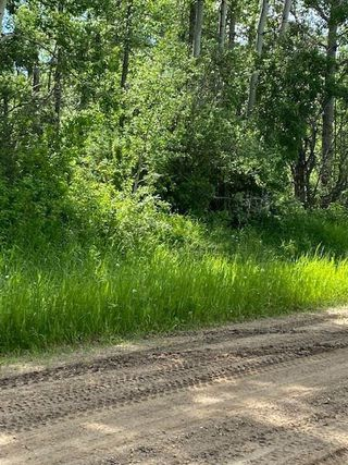 Photo 3: 55503 RGE RD 62: Rural Lac Ste. Anne County Rural Land/Vacant Lot for sale : MLS®# E4202378