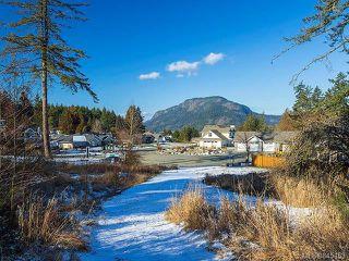 Photo 50: LT 14 Polo Field Pl in Cowichan Bay: Du Cowichan Bay House for sale (Duncan)  : MLS®# 845153