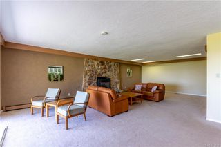 Photo 42: 3285 Livesay Rd in Central Saanich: CS Martindale House for sale : MLS®# 841868