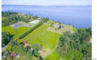 Photo 8: 3285 Livesay Rd in Central Saanich: CS Martindale House for sale : MLS®# 841868