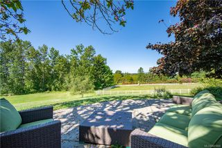 Photo 39: 3285 Livesay Rd in Central Saanich: CS Martindale House for sale : MLS®# 841868